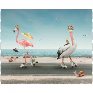 Jersey Rapport Flamingo