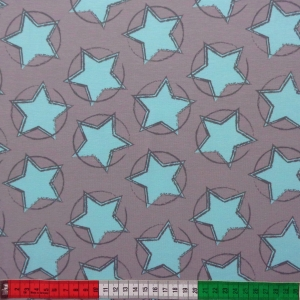 Bio-JerseyStars in the middle grau-mint