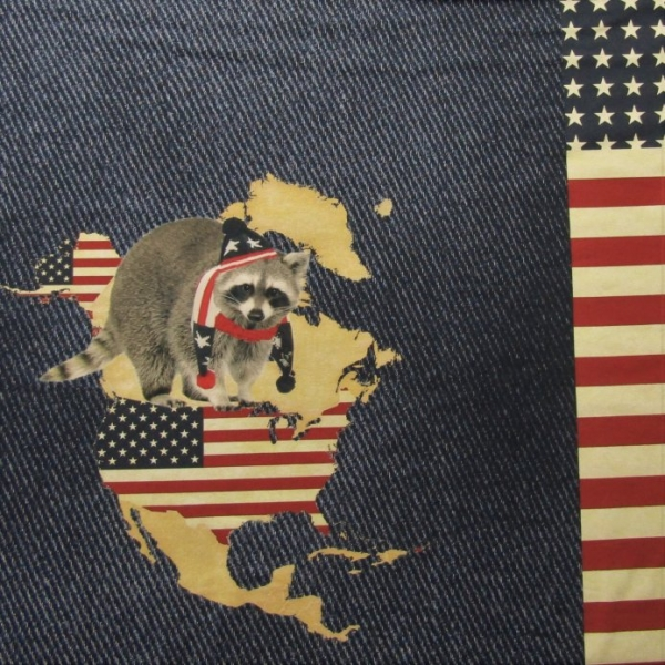 Jersey Panel American Racoon